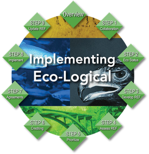 Eco-Logical 9 Steps